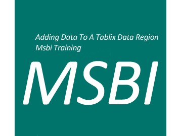 Types of Adding Data to a Tablix Data Region